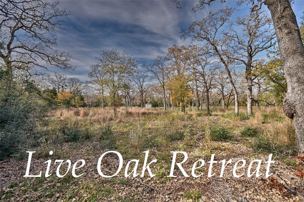 301 Live Oak Circle, Snook, TX 77878