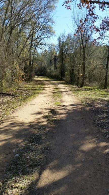 TBT SE Unimproved Road Road, Kerens, TX 75144