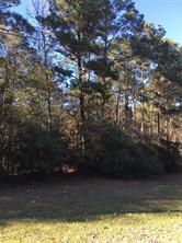 0 Ranch Trail, Magnolia, TX, 77354