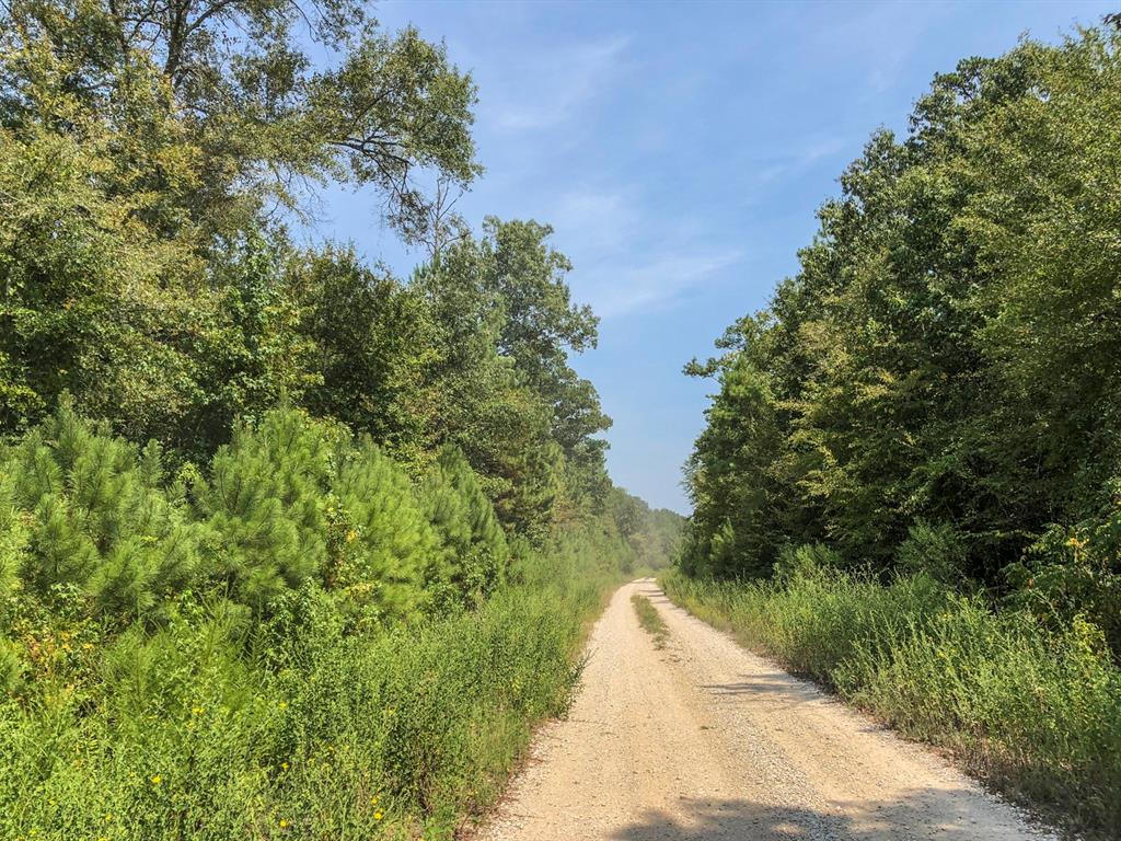 0 Off Spring Ridge Road, Nacogdoches, TX 75961