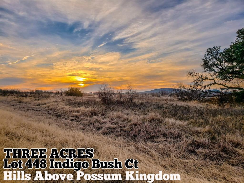 Lot 448 Indigo Bush Court, Graford, TX 76449