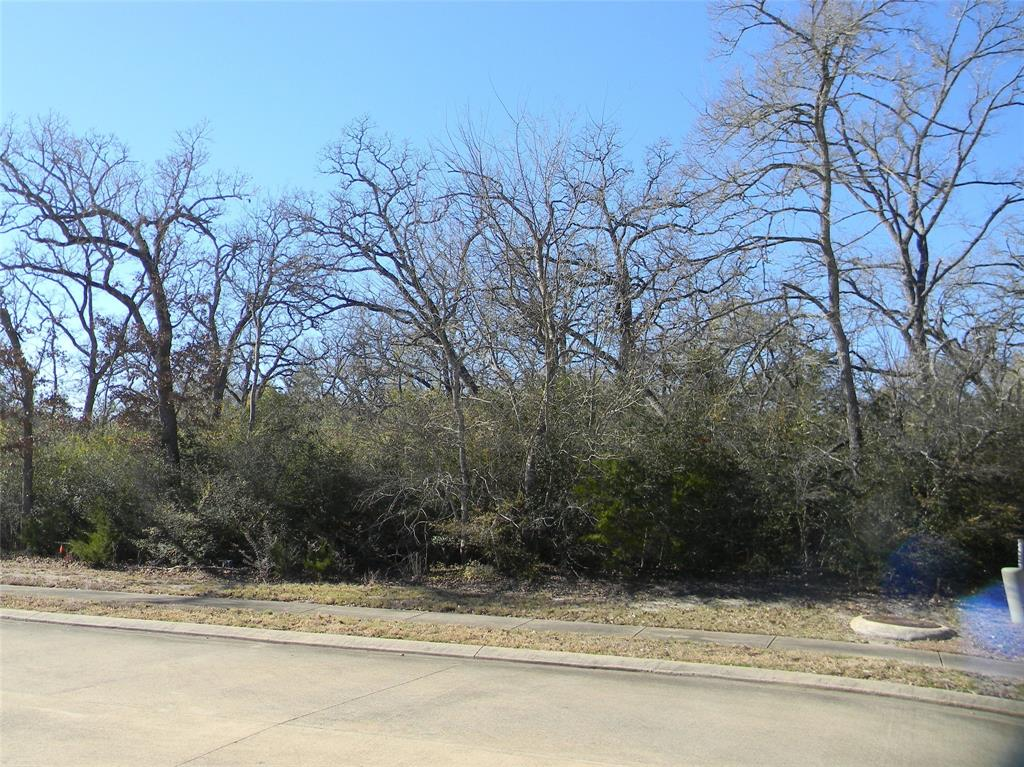 3407 Chinquapin Court, Bryan, TX 77807