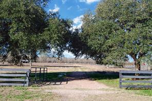 34150 Fulshear Farms Road, Fulshear, TX 77441
