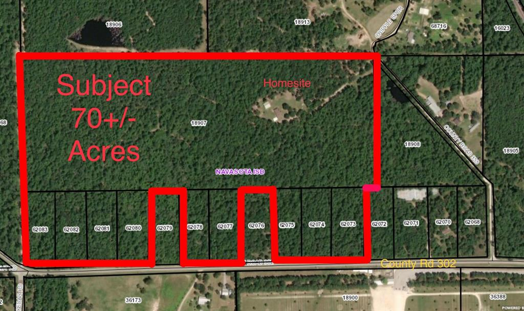 0 County Road 302, Plantersville, TX 77363