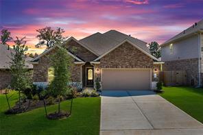 184 Chestnut Meadow Drive, Conroe, TX, 77384