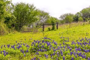 0 Riverside Plantation, Chappell Hill, TX, 77426