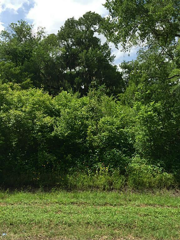 0 County Rd 165, Boling, TX 77420