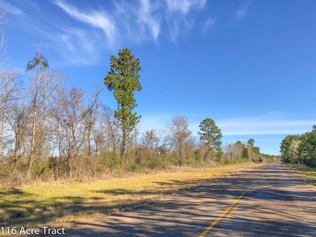 116 Ac FM 2912, Groveton, TX 75845