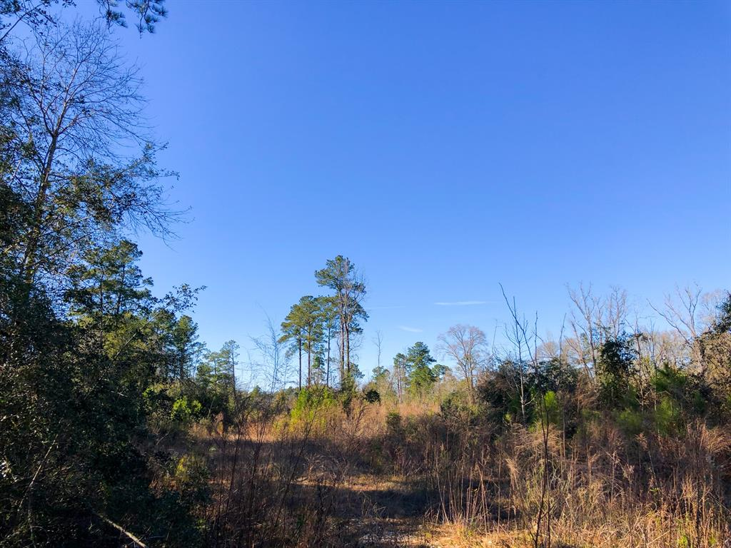 83 Ac Airline Rd, Silsbee, TX 77656