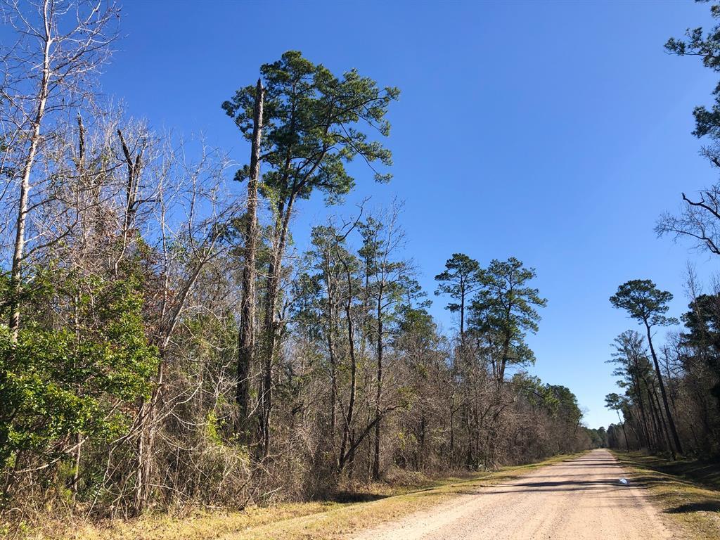 0 Palmer Road, Daisetta, TX 77538
