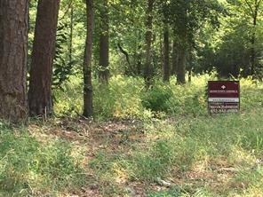 566 Forest Hills, Livingston, TX, 77351