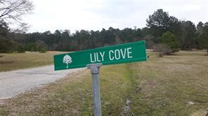 3 Lily, Huntsville, TX, 77340