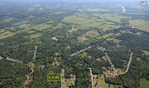 000 White Oak, Shepherd, TX, 77371