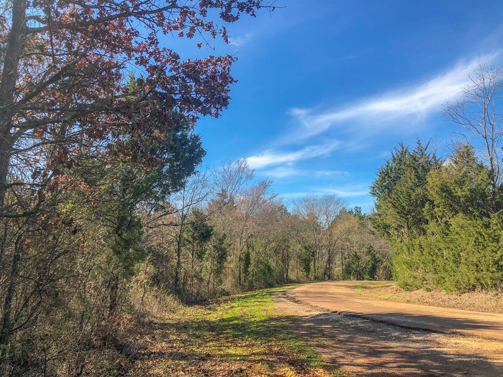 35 Ac County Road 4221, Jacksonville, TX 75766