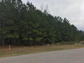 11401 Dans, Montgomery, TX, 77316