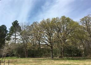 Lot 36,37 Wild fern Trail, Spring, TX, 77386
