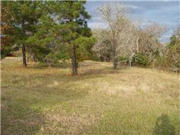 TBD Scenic Woods, Point Blank, TX, 77364