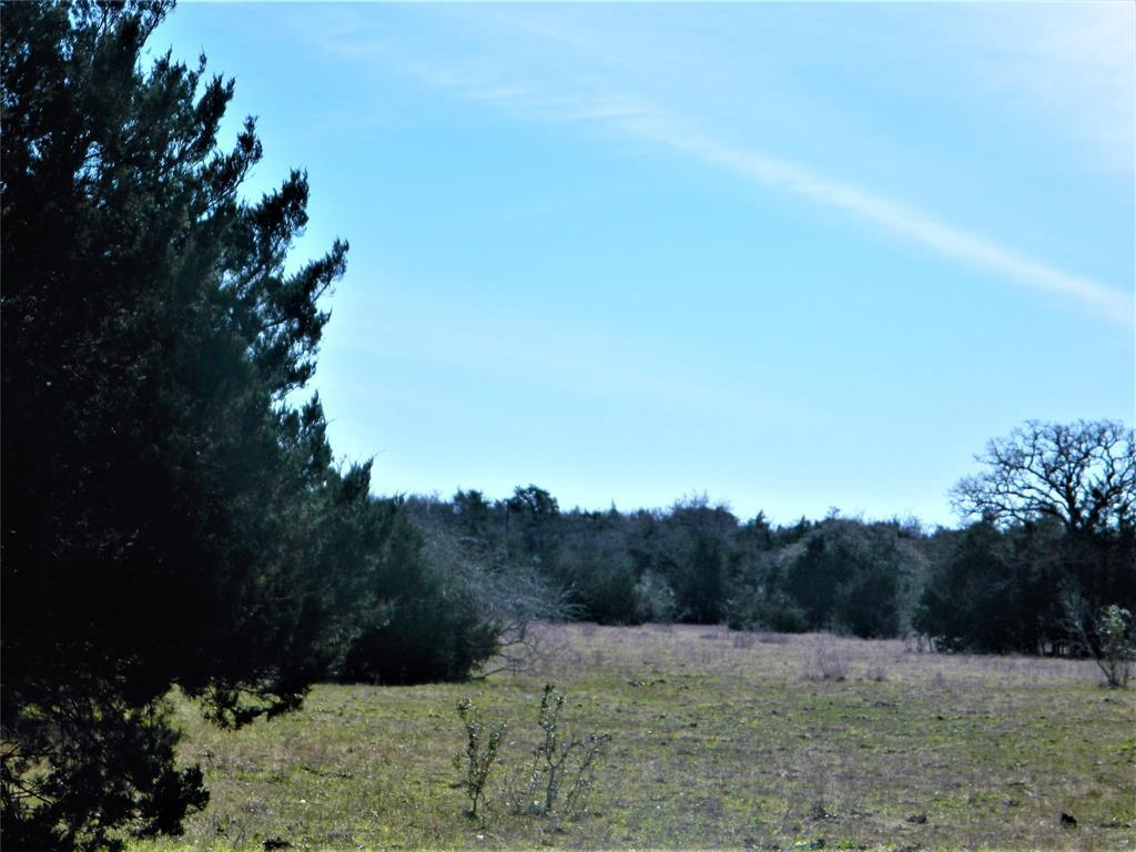 1501 Bell Settlement Road, Ledbetter, TX 78946