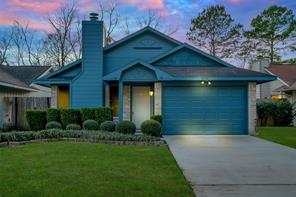 23531 Tree House, Spring TX 77373