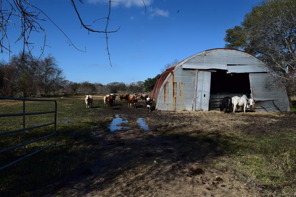 000 County Road 740 Sawmill Road, Pledger, TX 77468