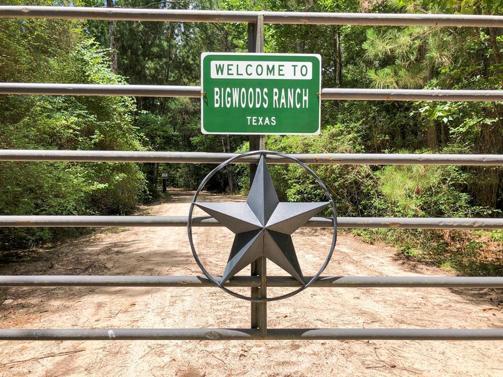 547 Ac Highway 19, Trinity, TX 75862