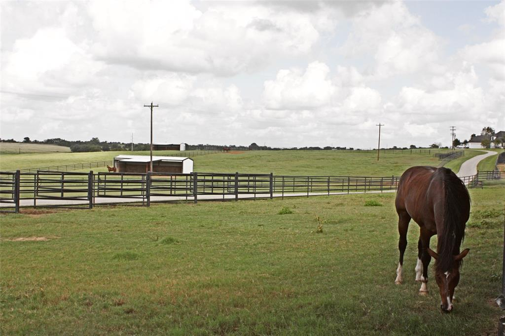 Ever dreamed of owning your own private equine oasis in the country? 200+ Acres of property featuring 5 residences, 62,400 SF hay barn/arena, 29,125 SF horse/livestock barn with 17 stalls + tack room, horse walkers/livestock pens, feed storage, on-site fuel station, equipment/trailer storage, 2 stock ponds, pasture land producing hay, 2 gated entries, fencing across entire property & more! Here's your chance to call this slice of Texas your own.