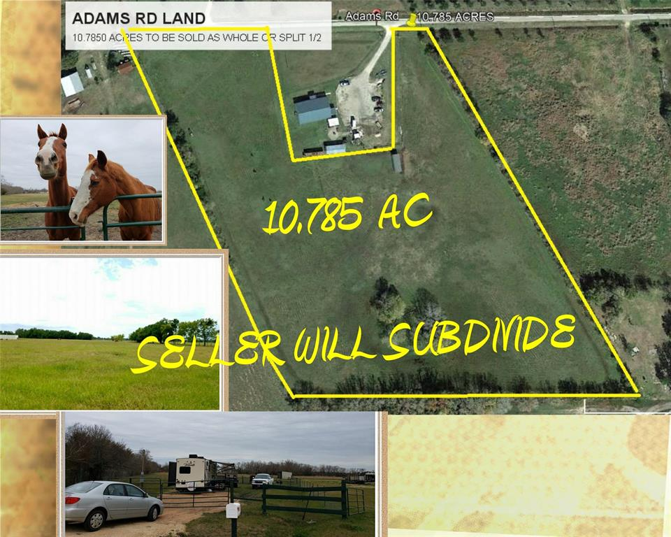 WONDERFUL LAND FULLY FENCED WITH IMPROVED GRASSLAND. PROPERTY READY FOR A HOME TO BE BUILT OR MOBILE HOME. NO RESTRICTIONS ON LAND. PROPERTY CAN BE DIVIDED IN HALF IF DESIRED TO 5 AC +/-. ELECTRIC & RV HOOKUP IS ONSITE. LAND WILL NEED WATERWELL & SEPTIC FOR DESIRED HOME WHEN PLACED. IF BUYING THE ENTIRE 10.785 ACRES THE PROPERTY HAS 2 PAVED RD ENTRANCES ON ADAMS RD. 1 WITH GATE, THE OTHER AT DEAD END WILL NEED CULVERT & GATE. QUIET NEIGHBORHOOD & NEIGHBORS! RV ONSITE FOR PURCHASE W/ LAND