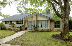 5719 grape street street, houston, TX 77096