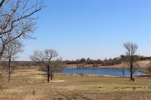53 pecan hills, plantersville, TX 77363