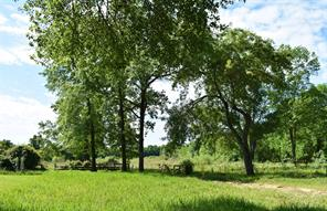 700 River Plantation Drive, Conroe, TX 77302 - HAR.com
