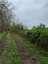 10502 County Road 786, Rosharon, TX, 77583
