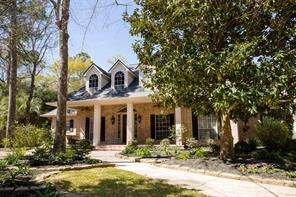 18 Treevine Court, The Woodlands, TX 77381