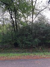 Lot 28 &  Cherokee, Magnolia, TX, 77354