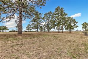1773 county road 219, anderson, TX 77830