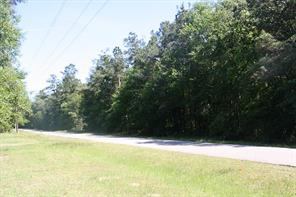 19902 petty walker road, new caney, TX 77306
