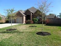 20006 Mitchell Cove Drive, Porter, TX, 77365