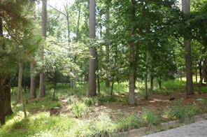 1649 Green Briar, Huntsville, TX, 77340