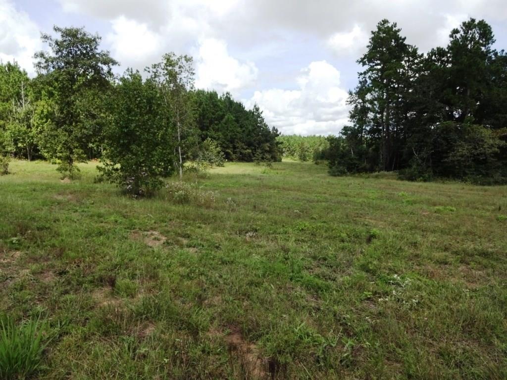 TR 23A Felix Currie Road, Oakhurst, Oakhurst, TX 77359