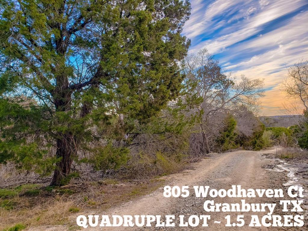 805 Woodhaven Court, Granbury, TX 76048