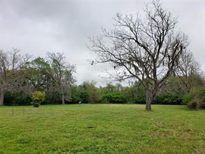 316 Red Oak, Brazoria, TX, 77422