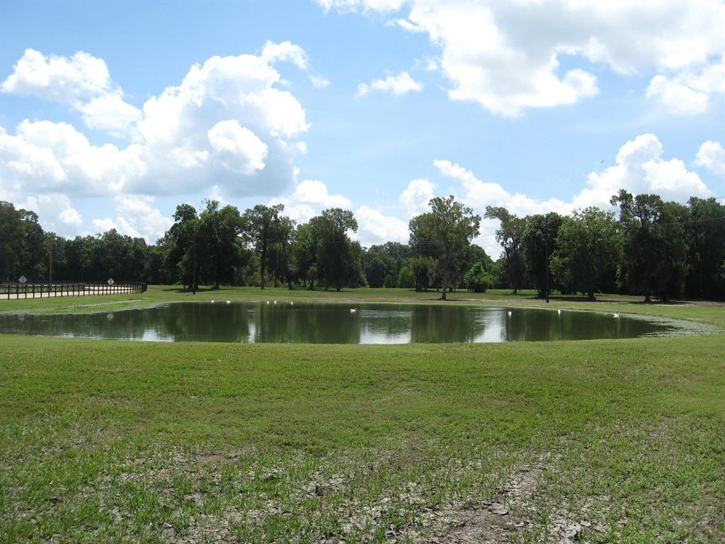 Lot 379 Sour Lake Circle