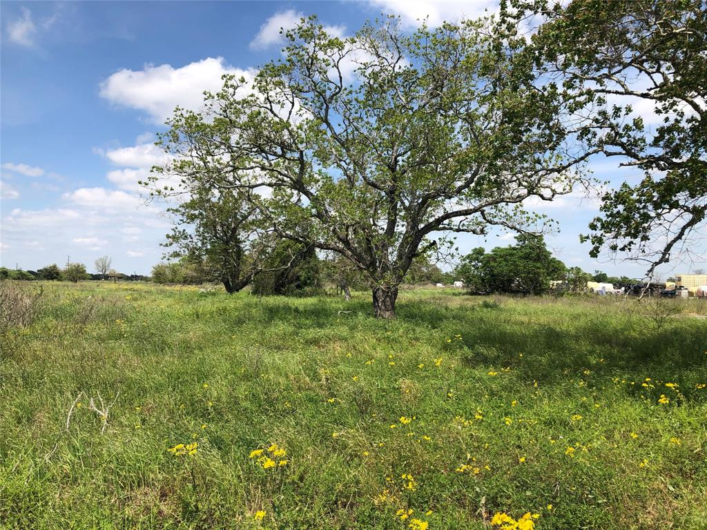 Tbd TULLEY Road, Cuero, TX 77954