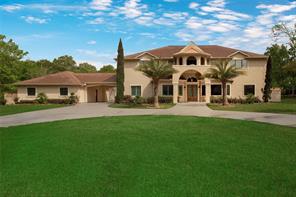 11538 Vintage Oaks Drive, Montgomery, TX 77356