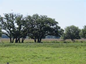 0000 farm to market 1300, el campo, TX 77437
