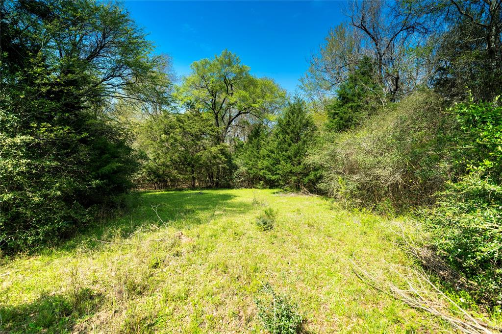 0000 Tract 4 FM 3091, Madisonville, TX 77871