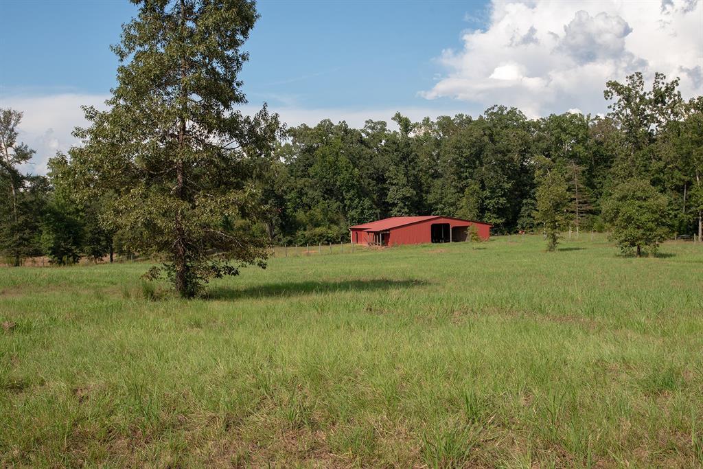 00 County Road 3240, Colmesneil, TX 75938