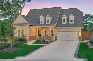 103 Silverwolf Cove Place, Montgomery, TX 77316