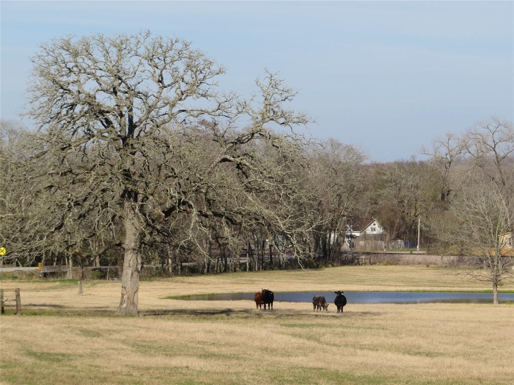 7.995 +-/ Acres Country Road, Dobbin, TX 77333