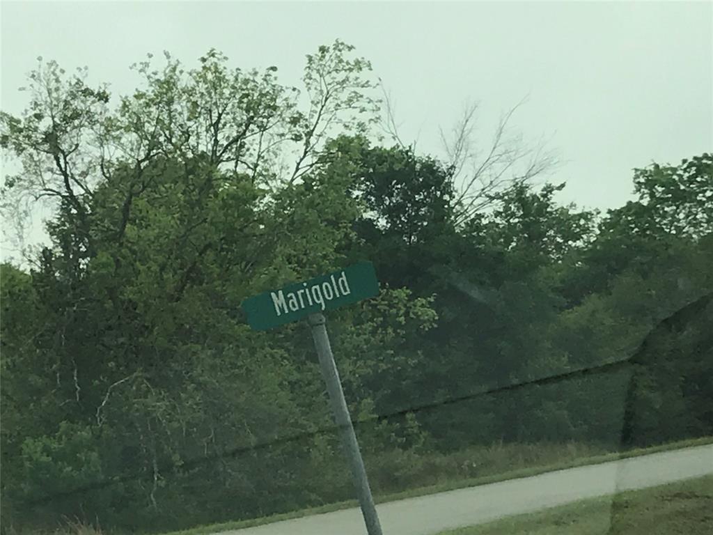 0 Marigold Drive, Prairie View, TX 77446