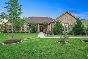 11719 Grand Pond Court Grand Harbor Montgomery, TX (33158211)